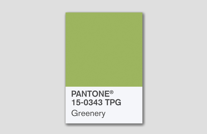 Pantone Color of 2017 Greenery New Shade